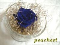 青いバラの画像