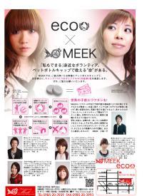 Meekのブログ-eco