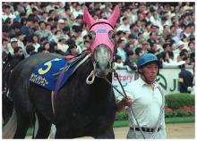 「東京優駿」 -俺と愛馬と、ときどき子供--サンエイサンキュー
