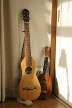 寄り添うギターとウクレレ
