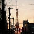 早朝の東京タワー
