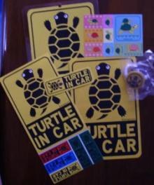 かめごん商会 TURTLE IN CAR