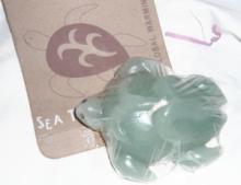 海亀キャンドル