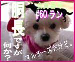 omameのブログ