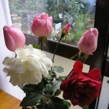 バラのある暮らし