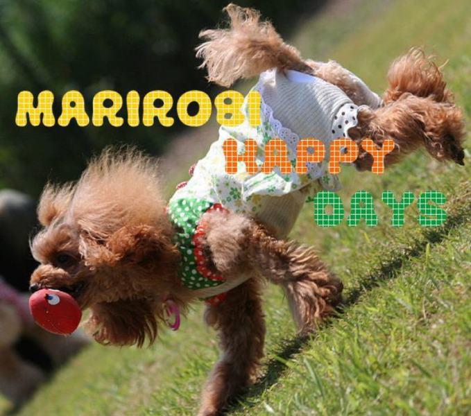 MARIROBI HAPPY DAYS