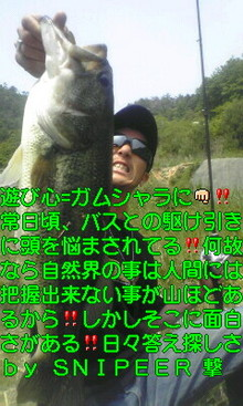 ST330006001001.jpg