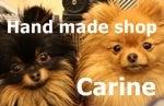 Carineのブログ-1