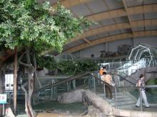 旅順・蛇博物館2