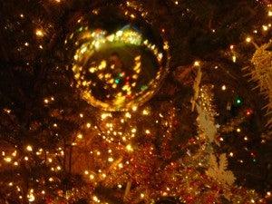 クリスマスツリー@湘南