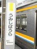 umishibaura