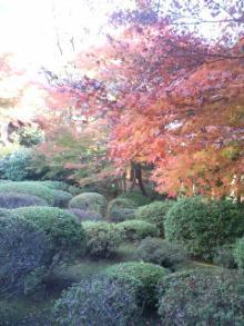旧古河庭園Ⅰ