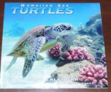 ウミガメカレンダー 2008