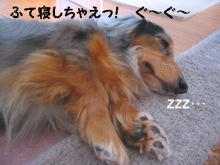 ふて寝ルフィ