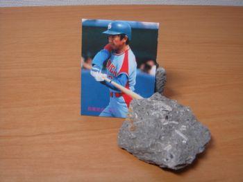 プロ野球カード倶楽部-タオ1