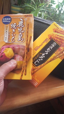 『新田純一のあっぷ だうん ロード』オフィシャルブログ powered by アメブロ-2009020215250000.jpg