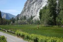 Yosemite_2008_3