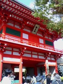 菊人形(入り口)