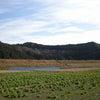 熊野本宮大社のそばにあるパワースポット☆大斎原 和歌山県の画像