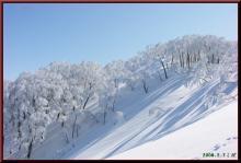 ロフトで綴る山と山スキー-鍋倉山上部斜面