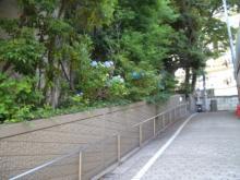 建物横坂道