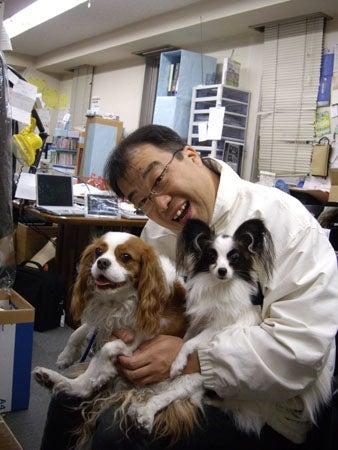 Shimizu 輪工房のブログ-こむぎ&きなこ2
