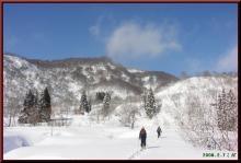 ロフトで綴る山と山スキー-田茂木池先