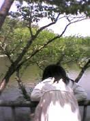 ありんこ姫と宝ヶ池