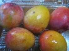 okinawa mango1