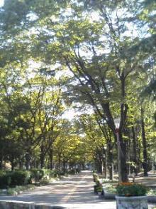ピュア☆カラーの日々色々-靱公園