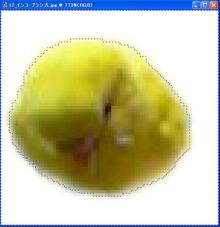 2_自動選択状態画像