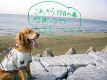 お天気は言うことナシッ(^^)v 楽しかった~~