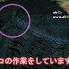 REBORN!三日連続『10年後雲雀』パート①の記事より