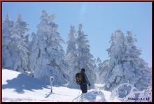 ロフトで綴る山と山スキー-モンスター群