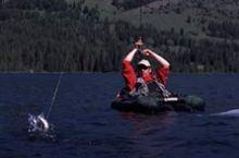 fishing_whistler.jpg
