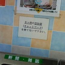 石川町駅にて。