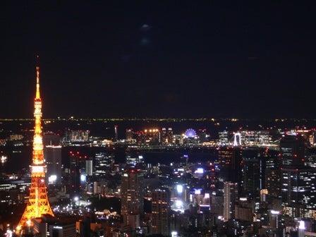 ちゃんこの日記-東京タワー