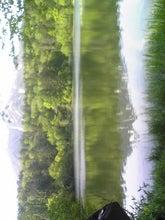 Image524.jpg