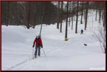 ロフトで綴る山と山スキー-林道手前