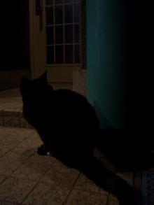 暗~い…。