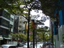 20060828赤レンガ通り1