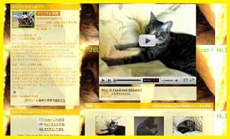 JELL-O the cat TVを開くよ