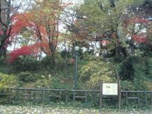『古墳の森』探検日誌