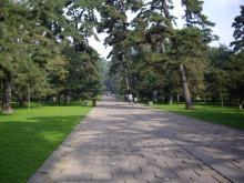 東陵公園 福陵 神道
