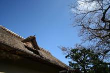 愛犬と楽しむ温泉旅館 絆 きずな-藁葺き屋根