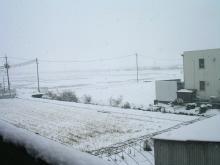 英語大好き!-snow