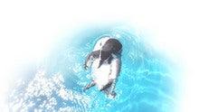 壁紙ペンギン