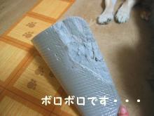 なんじゃこりゃ゛(`ヘ´#) ムッキー