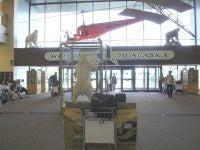 Ancharege Airport