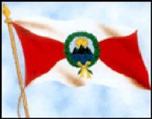 bandera con diagonales